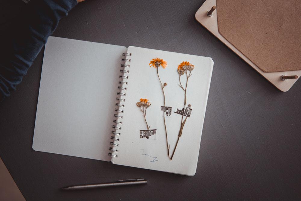 Položte první karton na spodní část lisu a naaranžujte tam kytičky, poté oddělte dělícím papírem a pokračujte, dokud nebude lis plný nebo nespotřebujete kytičky. Pak nechte lis odpočívat na suché místě. Za pár dnů budete mít dokonale vylisové květiny a rostliny. Kupte dětem sešit, kam si květiny mohou lepit, lepení si můžete usnadnit pomocí washi pásky, je to jednoduché.  Rozměry: 18x18x4 cm